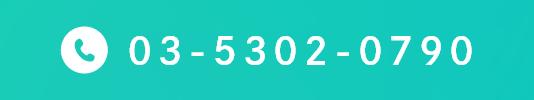 03-5302-0790